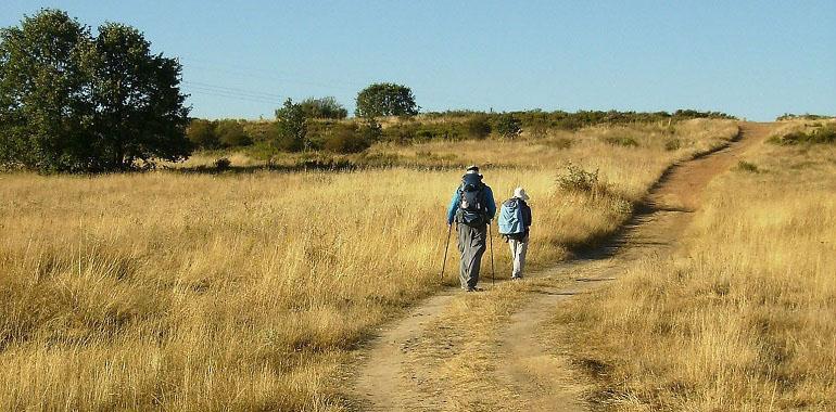 Unterwegs auf dem Camino