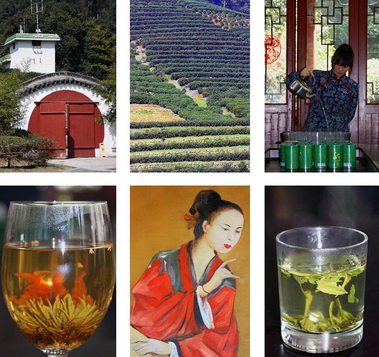 Teeplantage in Hangzhou