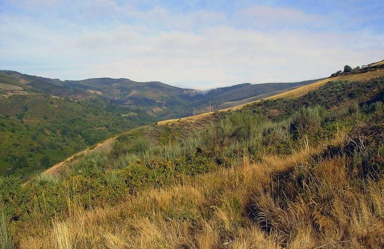 Jakobsweg nach Cacabelos