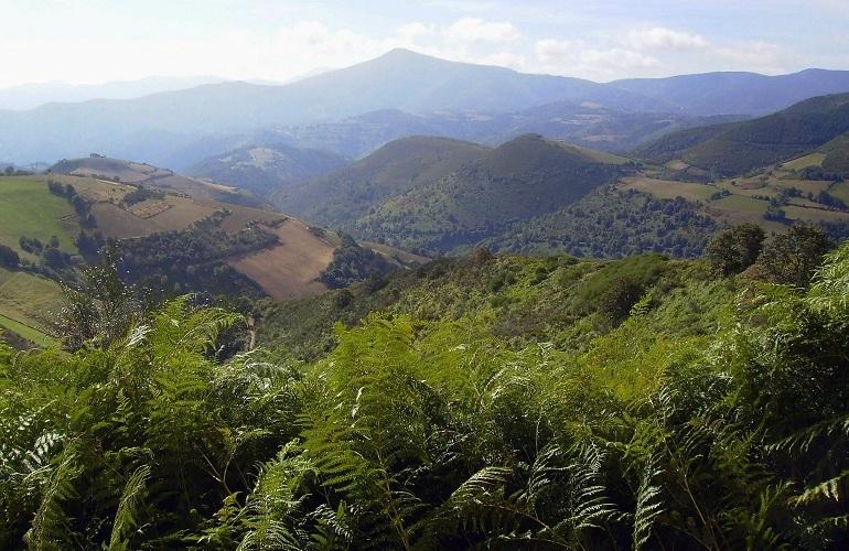Tolle Aussicht auf dem Camino