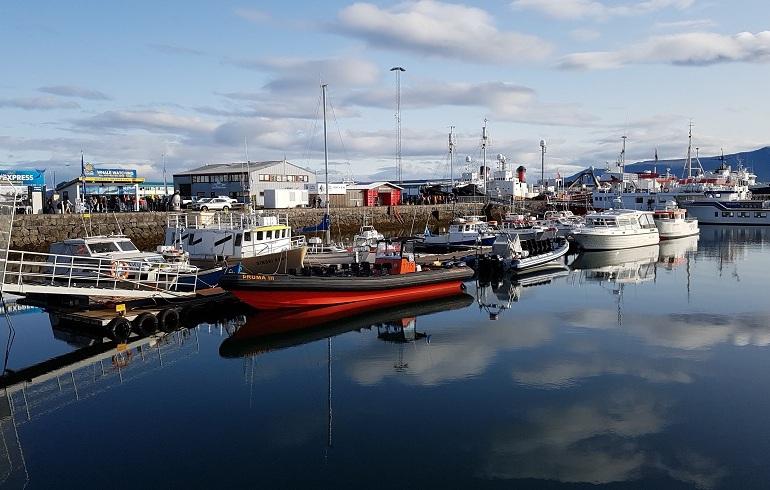 Boote im Hafen von Reykjavik