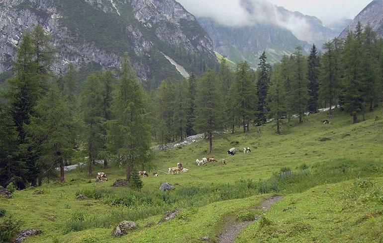 Alpenüberquerung auf dem Fernwanderweg E5