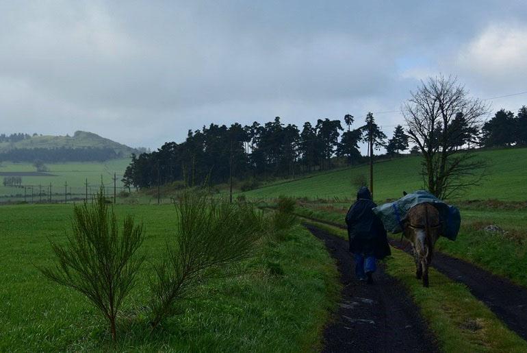 Regentag auf dem Stevensonweg