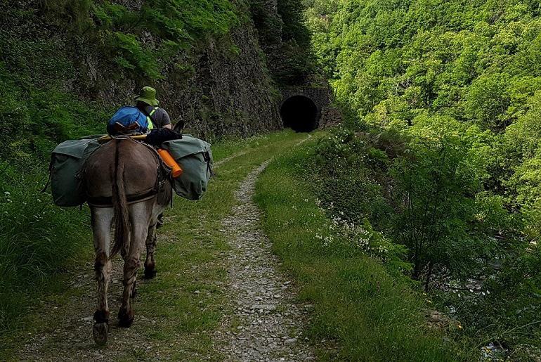Tunnel auf dem Stevensonweg